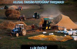 Devrekani'de çekilen fotoğraf TÜRKİYE 1.si oldu.
