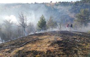 Devrekani'de Orman Yangını. 80 Dekarlık Alan Zarar Gördü.