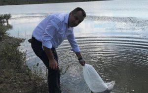 Tarım ve Orman Müdürlüğü Terzi Göletine 4 Bin Sazan Yavrusu Bıraktı.