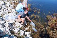 Devrekani Çiğdem Göletine 150 Bin Adet Balık Bırakıldı.